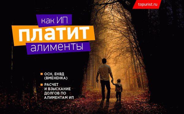 kak-nachislyayut-alimenti-5AD2D9.jpg