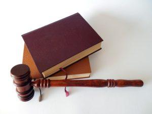 судебные книги